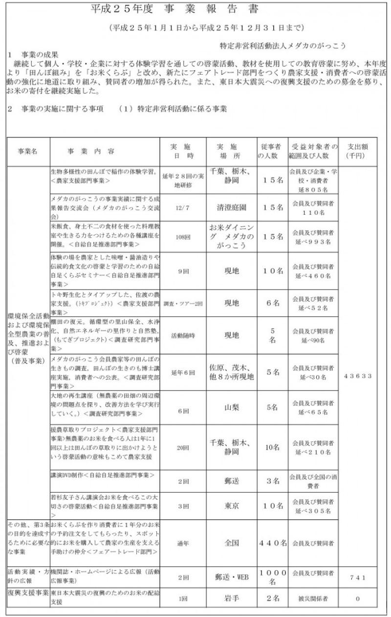 H25_jigyouhoukoku